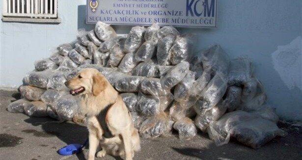 Afyon da uyuşturucu operasyonu