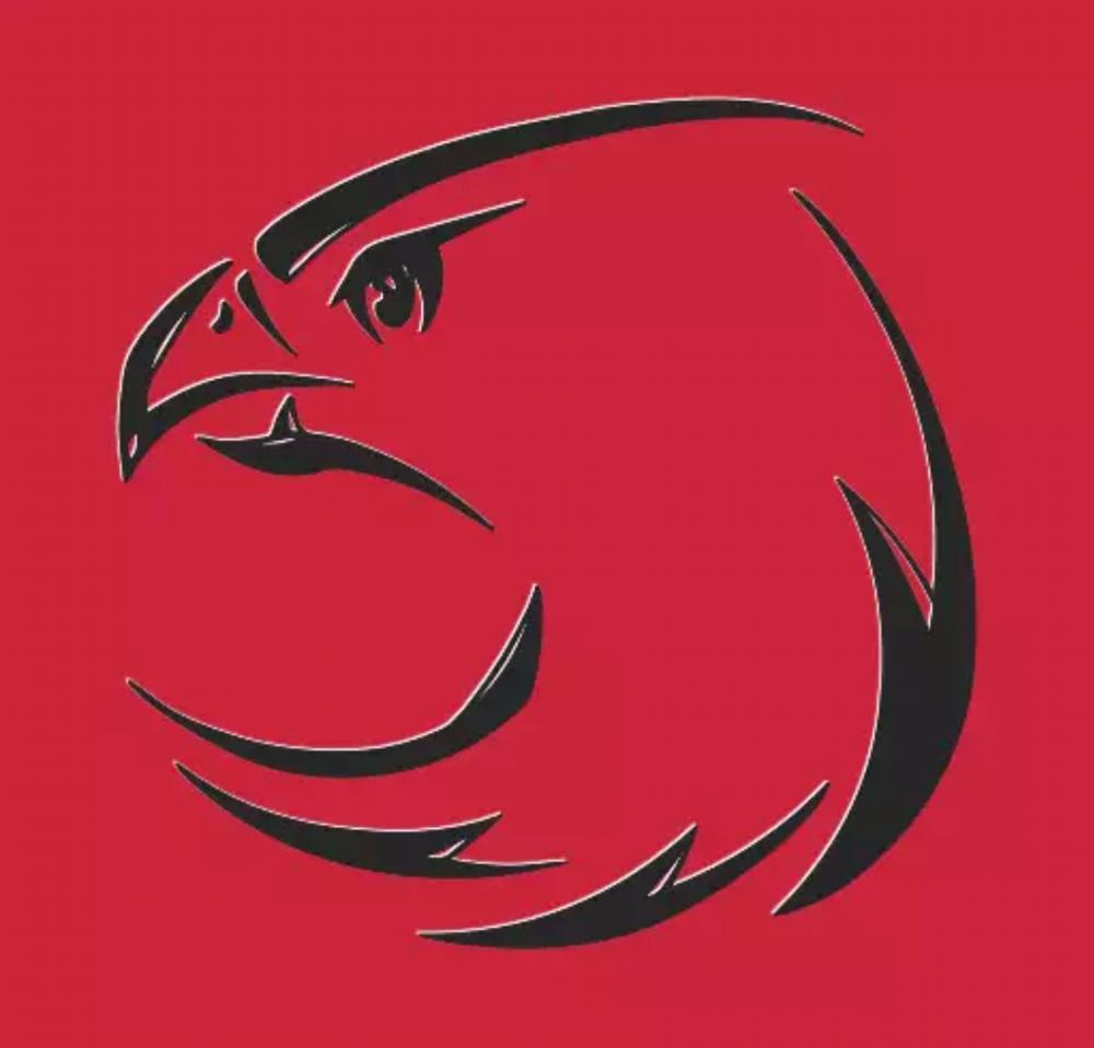 Kartal anlamına gelen Eagle'nin simgesinin kartal olması ile cuntacı askerlerin karargah olarak kullandığı hava kuvvetleri komutanlığının simgesinin de kartal olması dikkat çekiyor.