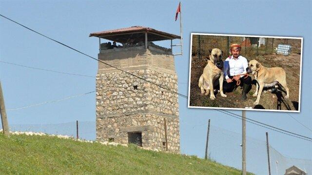 Sınırda Mehmetçiğin can dostu olacaklar