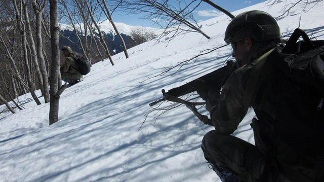 Giresun'un Yağlıdere ve Şebinkarahisar kırsalında terör örgütüne yönelik operasyon düzenlendi.