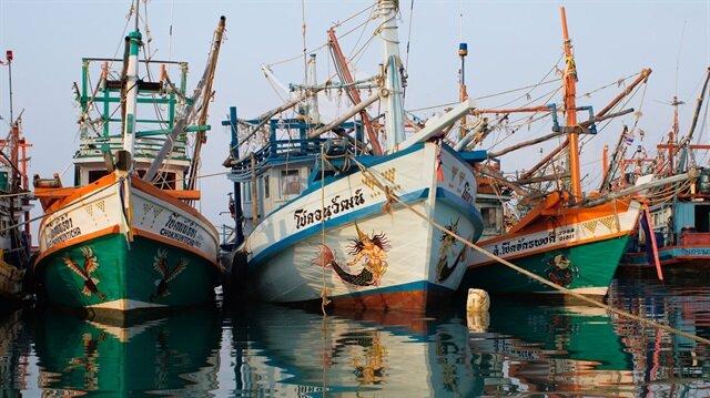 Ten percent of fish caught in oceans get dumped