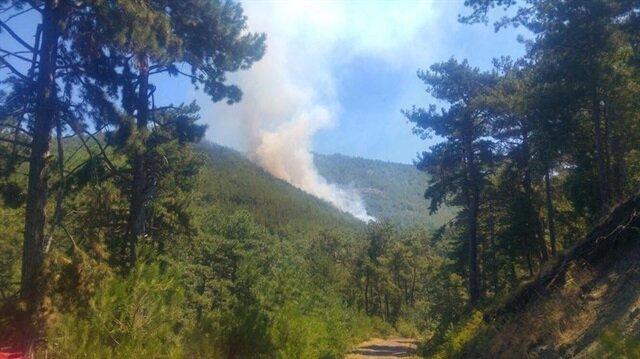 Balıkesir'in Sındırgı ilçesine bağlı Kertil Dağı'nda başlayan yangında 7 hektarlık alan zarar gördü.
