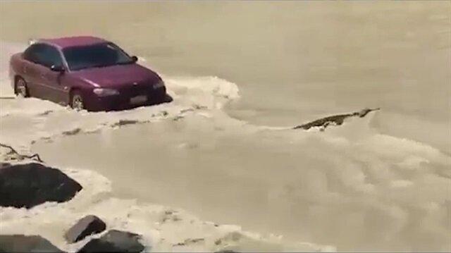 Timsaha korna çalan kırmızı otomobil