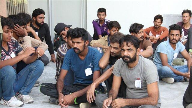 Erzincan'da 241 kaçak yakalandı