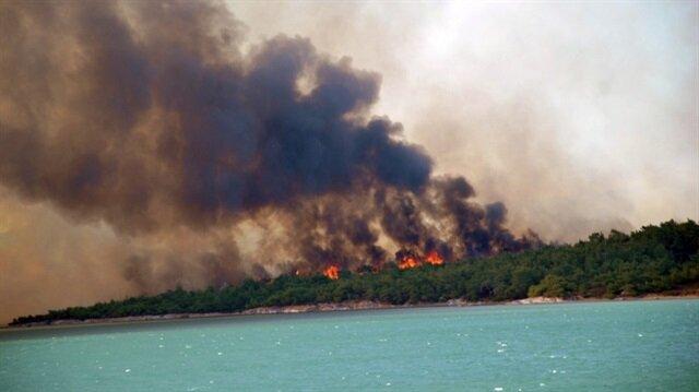 Ayvalık'taki yangında 15 hektarlık alan zarar gördü