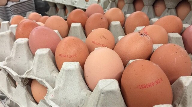 Turkish eggs 'clear of pesticide' at center of scare