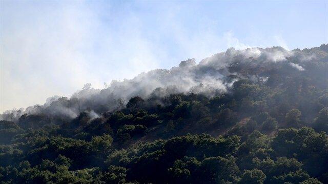 Erzican'ın Üzümlü ilçesinde ormanlık alanda çıkan yangın kontrol altına alınarak söndürüldü.