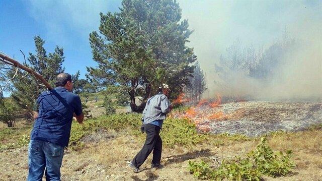 Sivas'ta orman yangını haberi