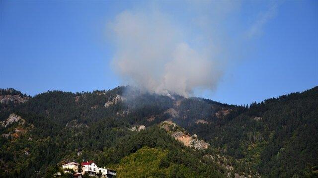 Son dakika Gümüşhane'de orman yangını
