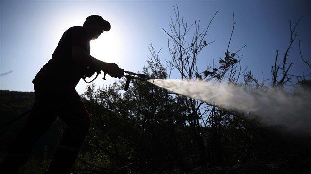 Muğla'da orman yangını çıktı-Son dakika haber