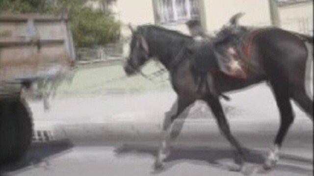 Kavurucu sıcakta koşturulan atın görüntüsü yürek sızlattı.