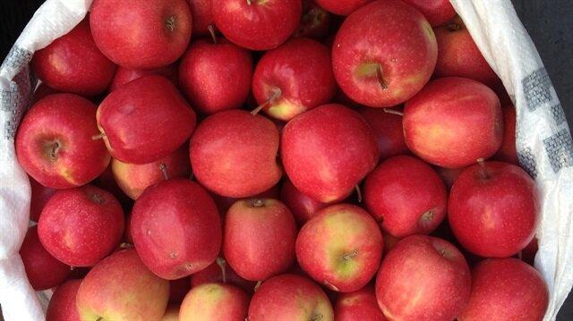 Amasya'dan elma gönderene PTT'den indirim uygulanıyor.