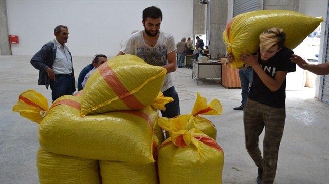 40 bin üreticiye 90 bin ton fındık randevusu verildi.