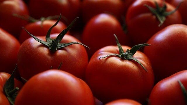 Turkey, Russia reach agreement on tomato exports