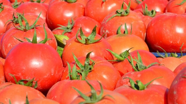 Russia 'backdates' import of Turkish tomatoes to Nov. 1