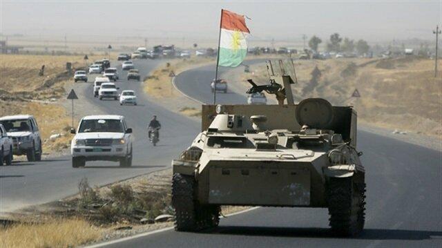 Germany resumes military training of Peshmerga