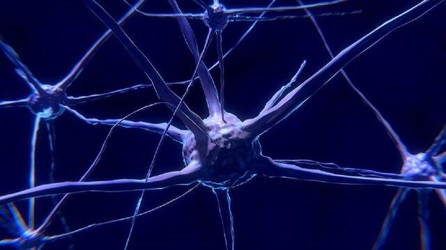 Proje insan beynindeki elektrikle uyarı sisteminin nasıl çalıştığı özellikle alzaymır ve epilepsi gibi hastalıkların tedavi edilmesi için oldukça önem taşıyor.