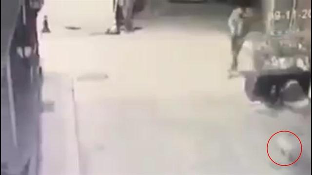 Maganda kediye kurşun yağdırdı