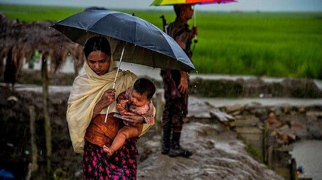 Asian, European diplomats urge safe return for Rohingya