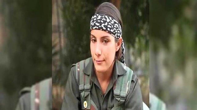 """الجيش التركي يُحيّد الواجهة الدعائية لـ """"بي كا كا"""""""
