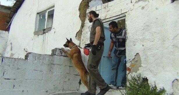 Roman mahallesine şafak baskını: 60 gözaltı