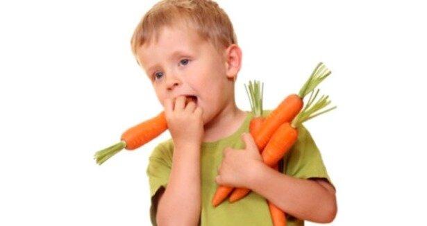 essay carrot kids