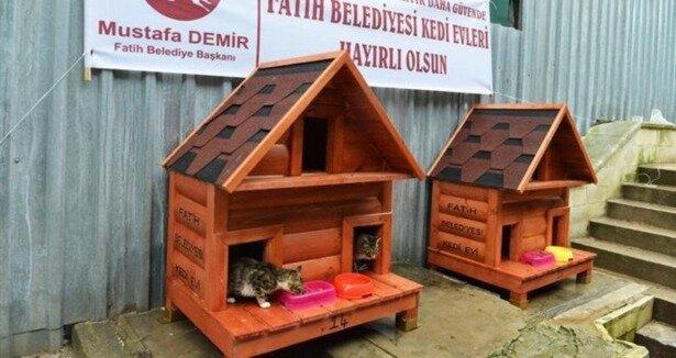 Домик для бездомных кошек