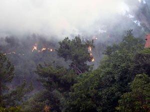 Karabük'teki yangın büyüyor