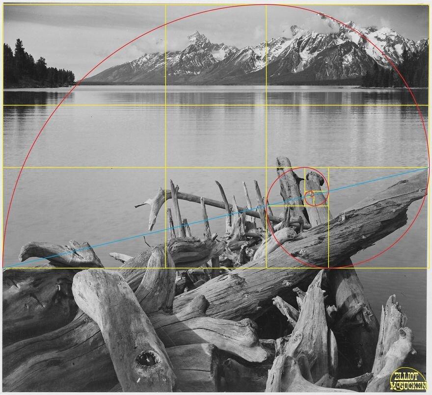 Hayranlık uyandırıyor: Fotoğraflarını 'altın orana' göre çeken dahi sanatçı