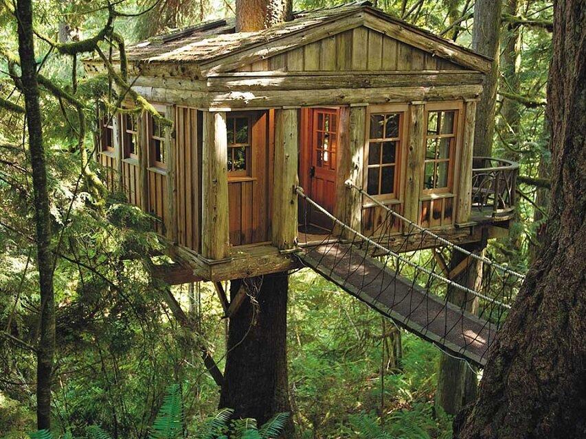 Muhteşem ağaç evlerle dolu içinizi ısıtacak 10 görsel