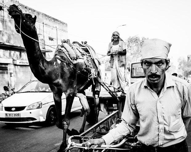 National Geographic yılın 'seyahat' fotoğrafları yarışması sonuçlandı