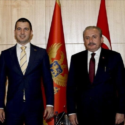 Turkey's parliament speaker meets Montenegrin counterpart