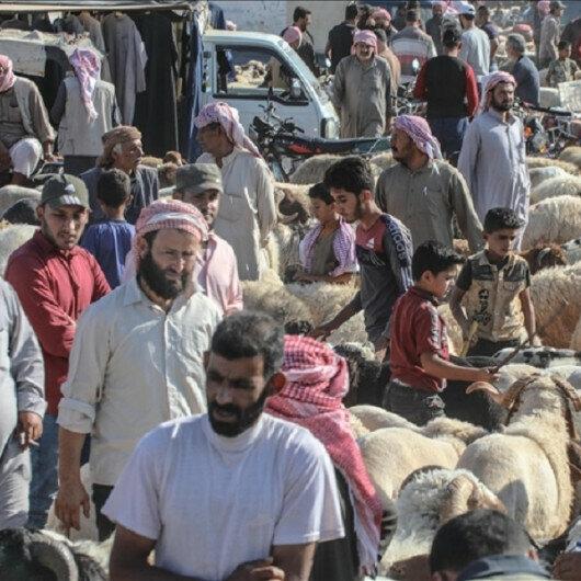Northwestern Syrians preparing for Eid al-Adha feast