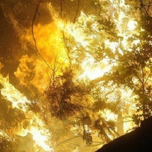 US capital issues air quality alert from wildfires on West coast