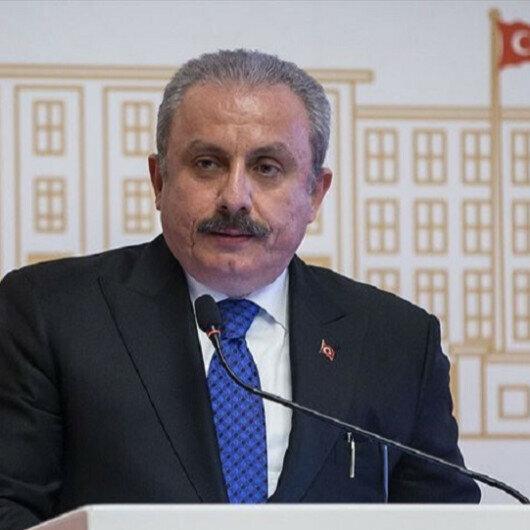 'Turkey aims to establish peace in Afghanistan': Parliament speaker