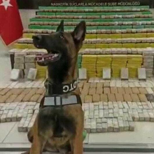 Over 714 kg of heroine seized in Turkey