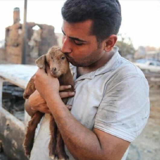 'Miracle' goat born from flames during forest fires in southern Turkey