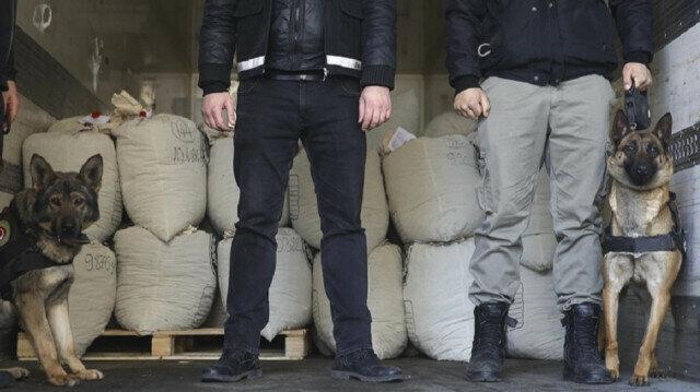 Nearly 300 kg of marijuana seized in eastern Turkey