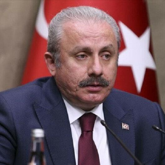 Turkish parliament head meets with Montenegro's deputy premier