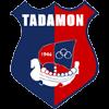 AL Tadamon Sour