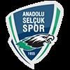 Anadolu Selçukluspor
