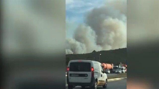 Tuzlada orman yangını