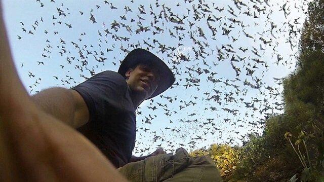 Dünyanın en büyük yarasa kolonisinin mağaradan çıkış anı
