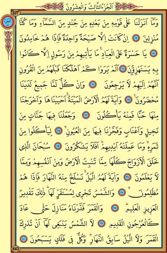 yasin suresi pdf download