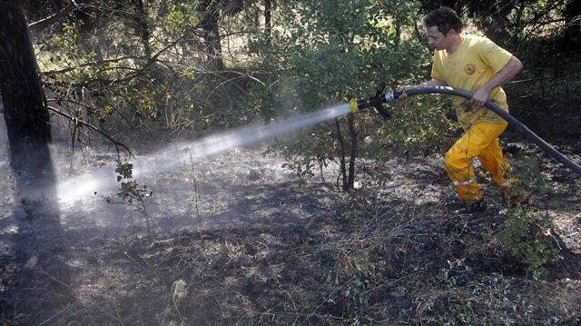 Yalovada 30 dönüm orman kül oldu