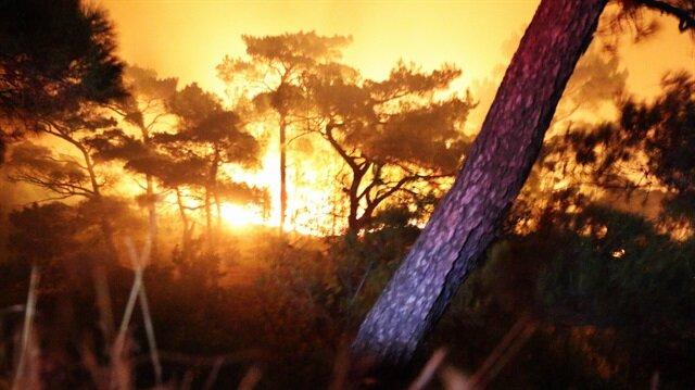 Kazdağları'nda yangın yayıldı