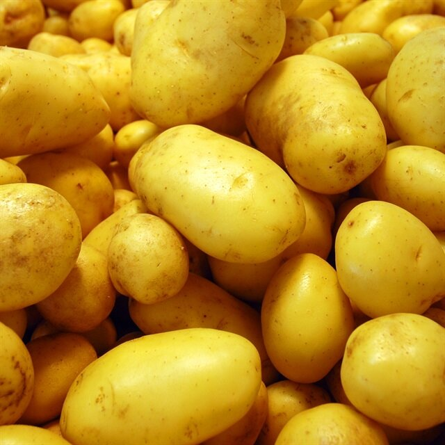 Patates yiyen zayıflar mı?