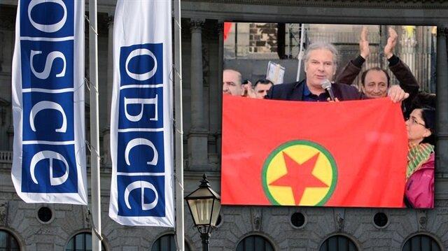 AGİT gözlemcisi PKK yandaşı çıktı