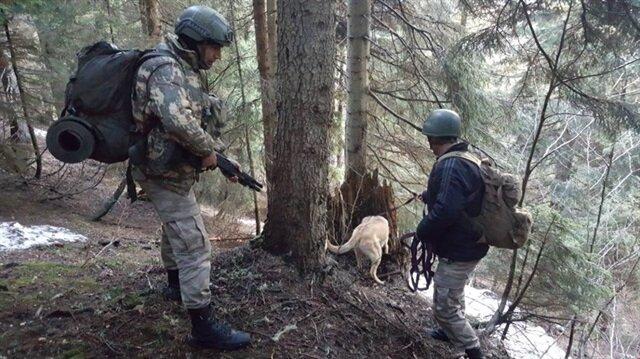 Giresun kırsalında terör operasyonu