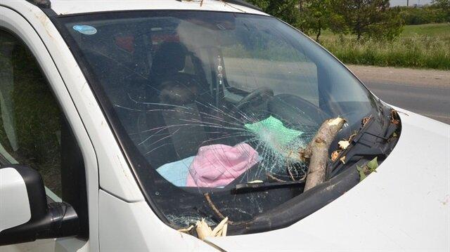 Seyir halindeki aracın üzerine ağaç devrildi